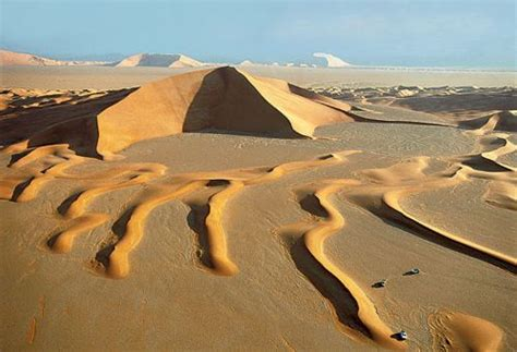 10 Facts about Arabian Desert   Fact File