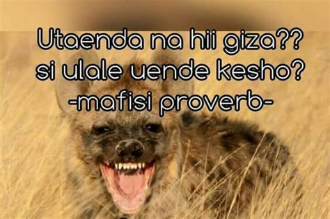 Hilarious: Comprehensive List of All the CRAZY Team Mafisi